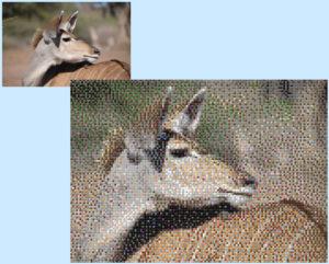 Mosaico di mattoncini - Kudu - Foto di Silvia Garuti - 7 x 5 Basi